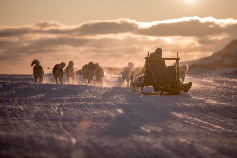 A dog sled heading into the sunset near Sisimiut in Greenland