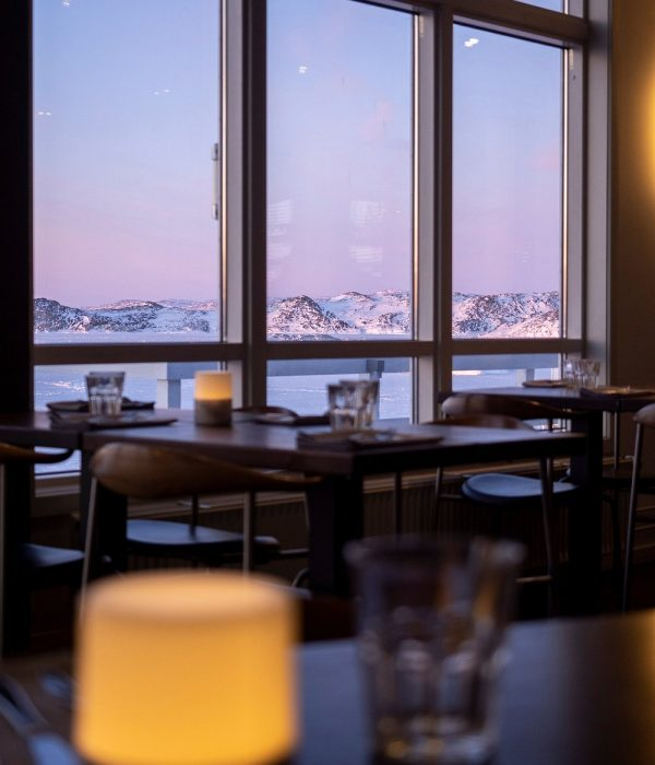 View from Restaurant Icefiord